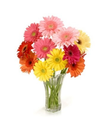 12 Mix Color Gerberas In Glass Vase Multi City Delivery