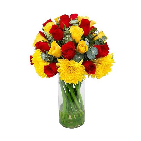 20 mix color red yellow roses and carnations in glass vase j k 20 mix color red yellow roses and carnations in glass vase mightylinksfo