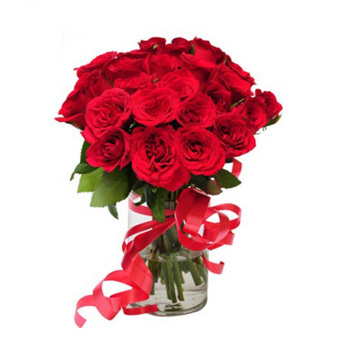 20 Red Roses In A Vase With A Ribbon Bow Multi City