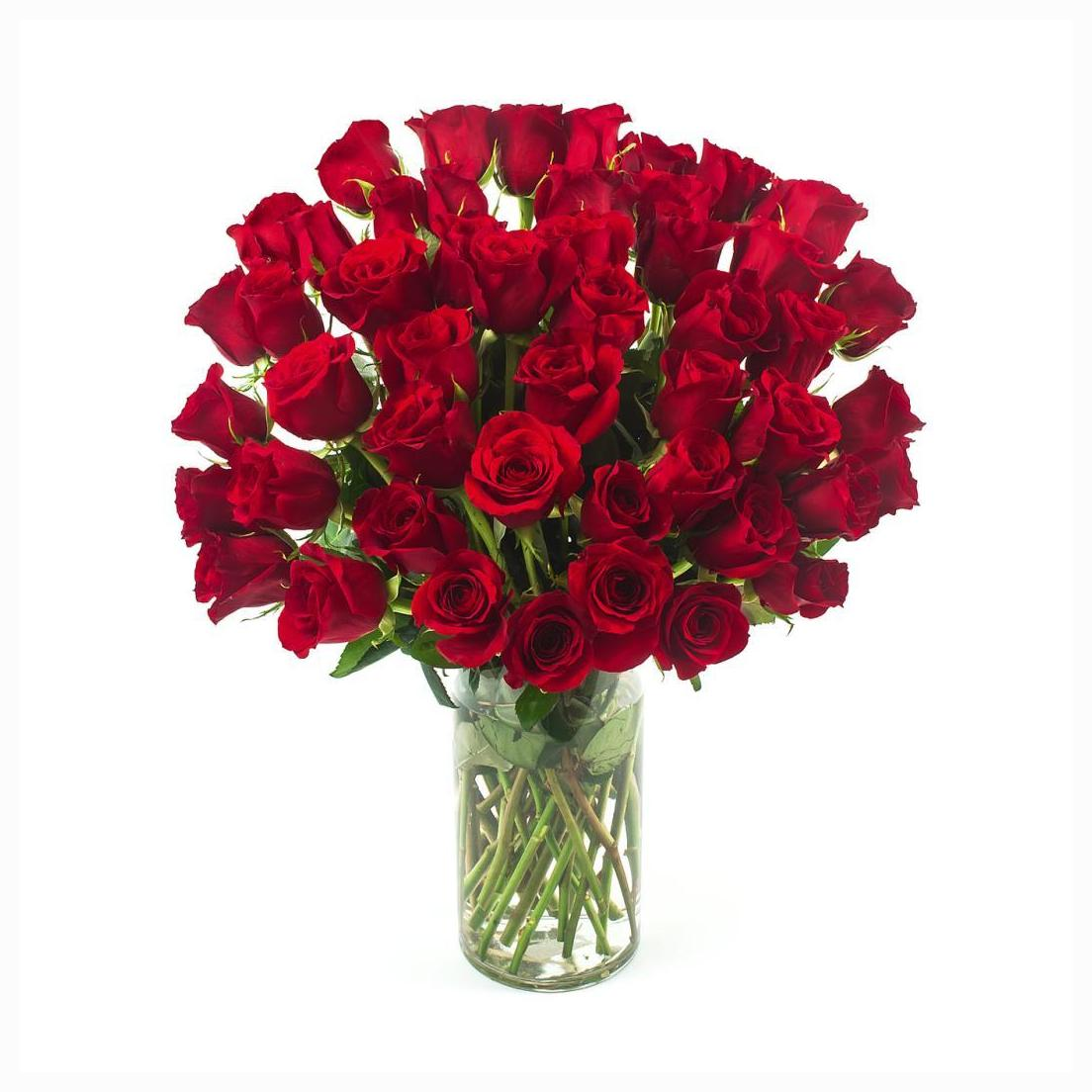 50 red roses in a glass vase for other cities delivery outside 50 red roses in a glass vase for other cities delivery outside baroda reviewsmspy