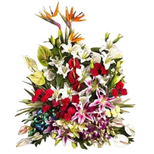 Premium Full Exotic Flowers Arrangement of Beautiful Birds of Paradise, Lilies, Anthuriums, Carnations & Orchids